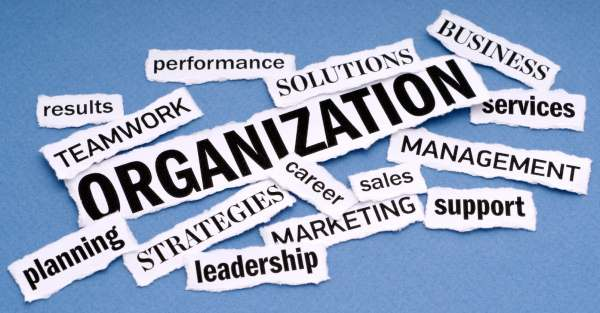 essential-features-of-an-organization