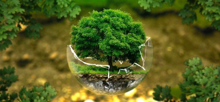 Mencegah Kerusakan Lingkungan dengan ISO 14001
