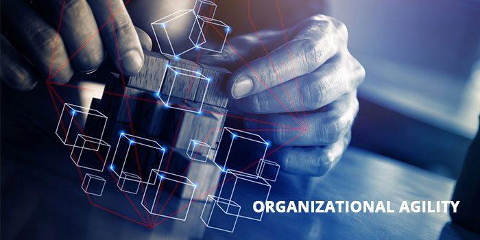 Organizational-Agility-adalah
