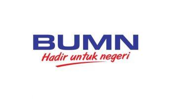 BUMN-1